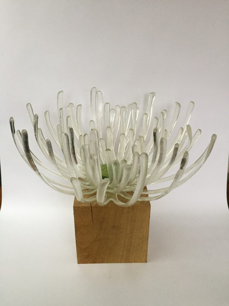 Chrysantschaal transparant - Maureen Heijdemann - Glasvaardig